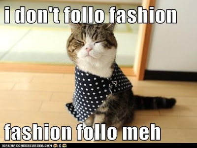 lolcat-fashion